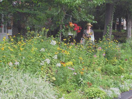 le jardin du forum Gh54eg6k