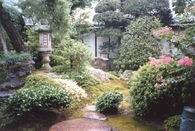 le jardin du forum La8esojq