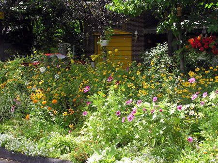 le jardin du forum Vubht745